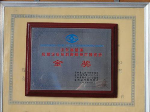首届私营企业专利高新技术博览会金奖