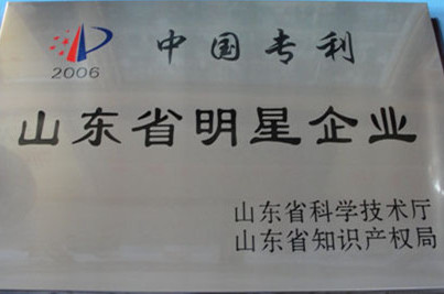 中国专利—山东明星企业
