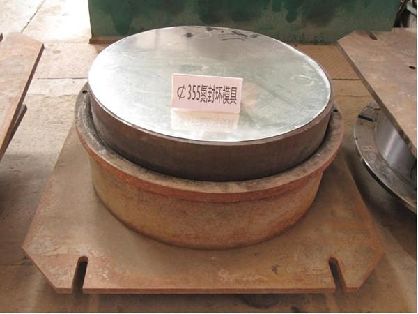 Φ355氮封环模具
