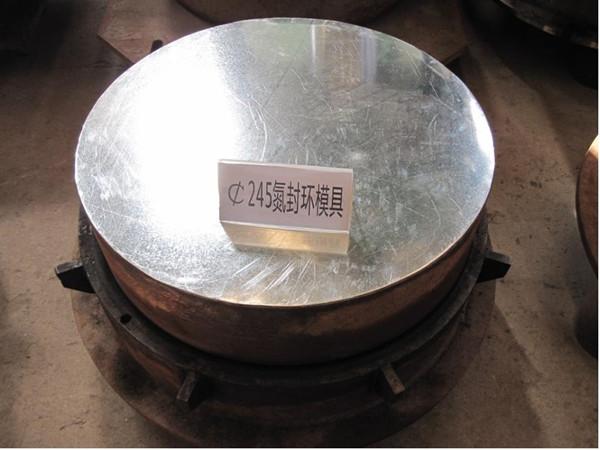 Φ245氮封环模具